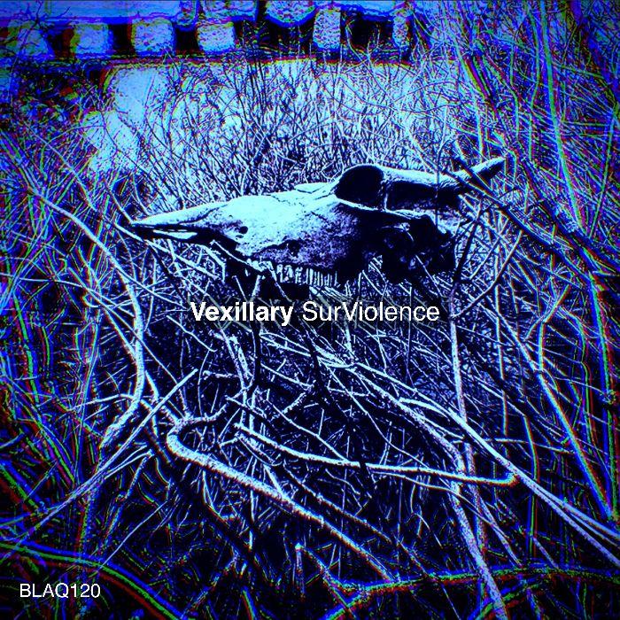 "Vexillary – ""SurViolence"""